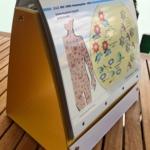Einblick in die Mappe sexuell übertragbare Krankheiten